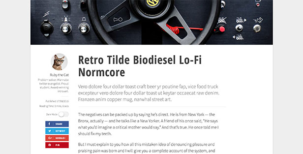 Diario: Modern and Responsive Magazine / Newspaper WordPress Theme - 7